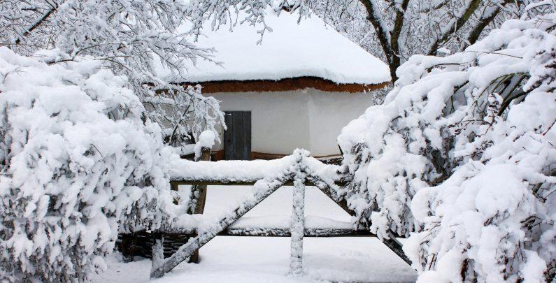 How Do I Winterize My Irrigation System?