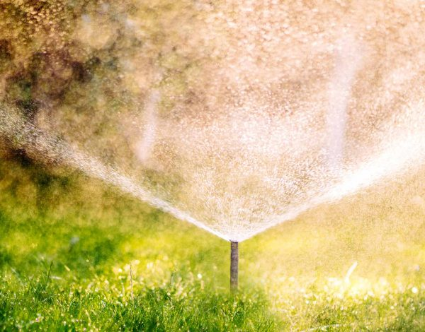 What Are The Advantages Of A Sprinkler Irrigation System?