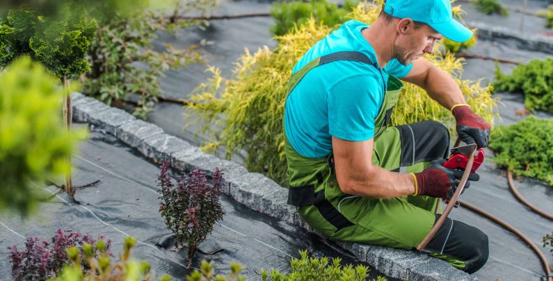 Things to Consider before Installing an Irrigation System