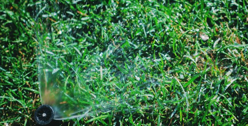 When to Stop Watering Your Lawn in The Fall?
